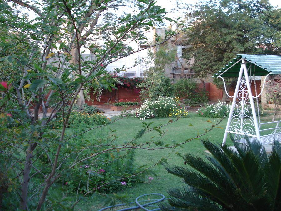 Kittys Garten